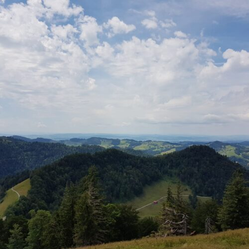Sommerwanderung19 (4)