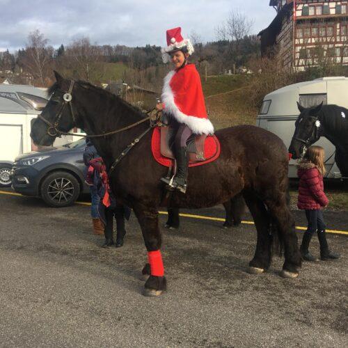 Weihnachtsgymkhana19 (6)