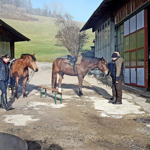 Berchtoldsritt20 (15)